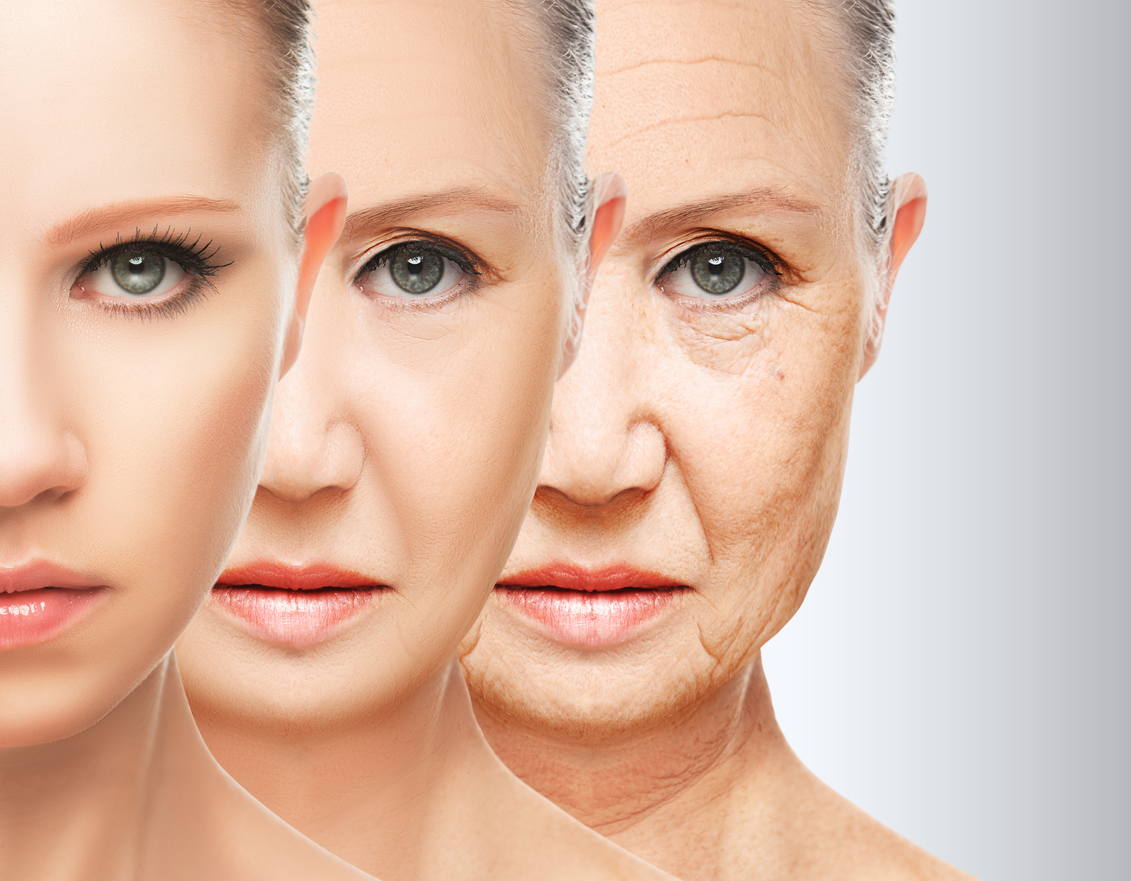 Image result for plastic surgeons